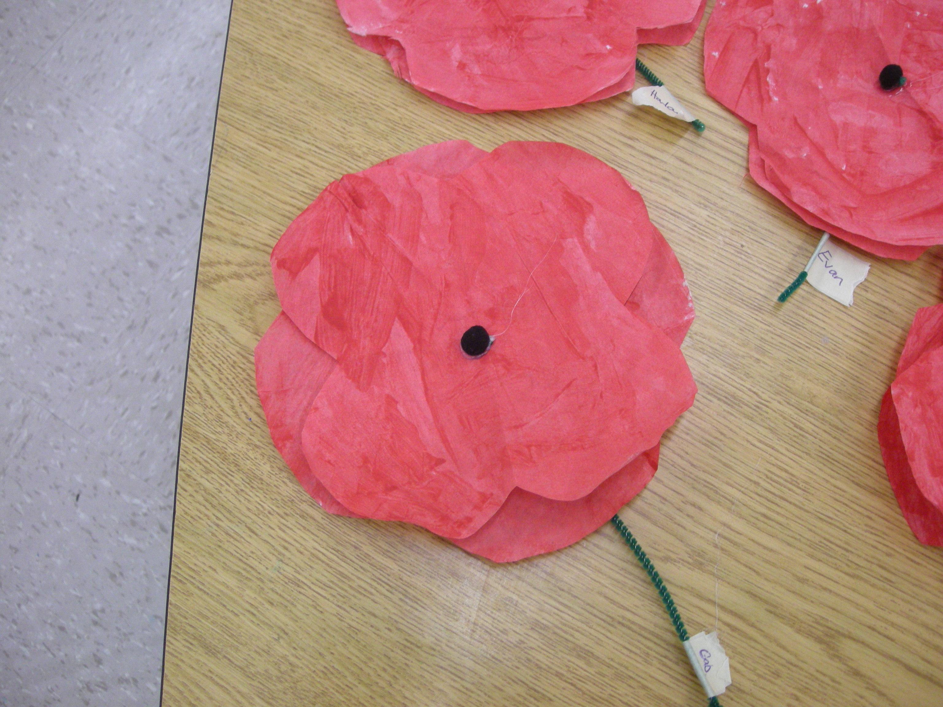 Remembrance Day In Kindergarten